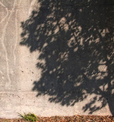 Tree shadow (Dekalb Ave, Atlanta GA)